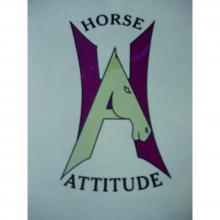 Horse Attitude